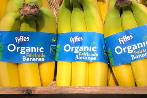 Foto © Fyffes organic banana band