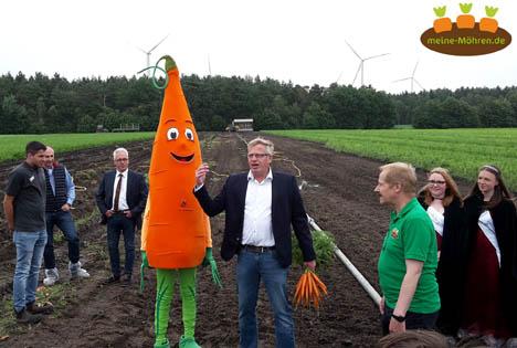 Möhren sind das meistgeerntete Gemüse in Deutschland