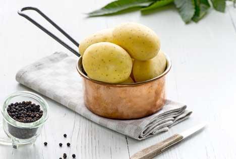Low-Carb-Kartoffeln exklusiv bei Kaufland. Foto © Kaufland/Europlant Pflanzenzucht