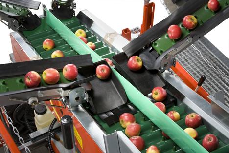 Foto © Munckhof Fruittech Innovators