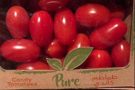 Pure Harvest UAE Foto © Min LNV /agroberichtenbuitenland.nl