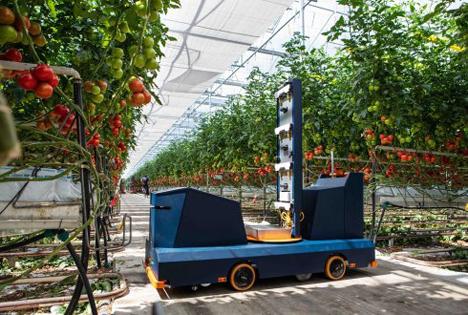 Plantalyzer. Foto © WUR