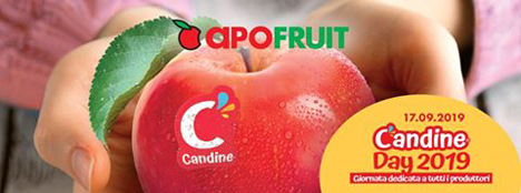Candine®-Apfel Poster. Foto © Apofruit