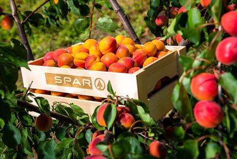 Initiative von SPAR und Fairfruit Österreich. Foto © SPAR/Brunnbauer
