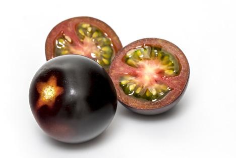 Die lilafarbene Tomate YOOM®. Foto © 2019 Syngenta