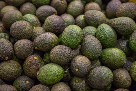 Apeel Avocado. Foto © Apeel Avocado - Migros