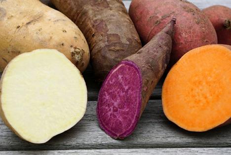 BLE: Süßkartoffeln – Gemüse mit Potenzial