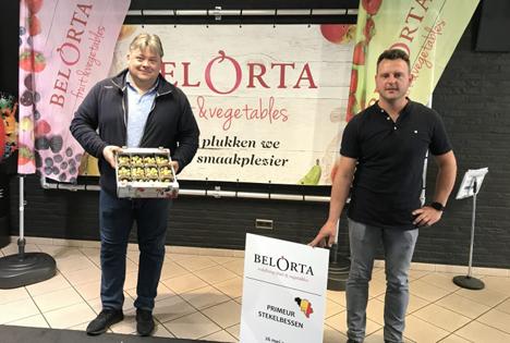 BelOrta versteigerte erste Stachelbeeren von 2020