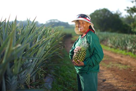 Dole Fresh Fruit, Pineapple Farm (Foto © Business Wire)