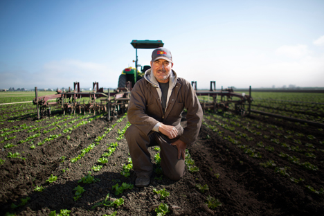 Dole Fresh Vegetables Farm (Foto © Business Wire)