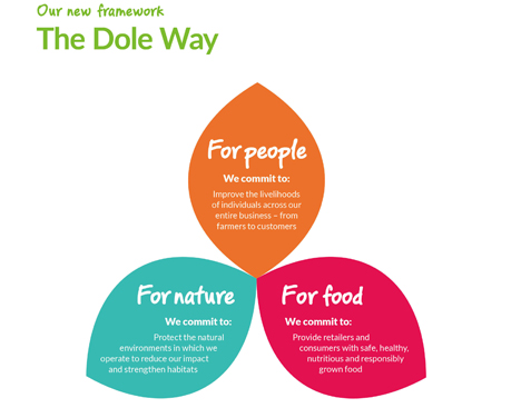 The Dole Way Framework (Graphic © Business Wire)