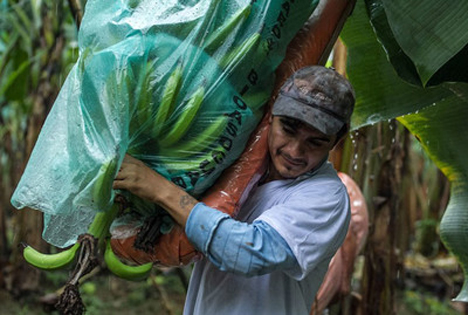 Foto © CLAC comercio justo