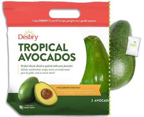 Hazel Tech®  avocado nov 20 Foto © Hazel Tech®