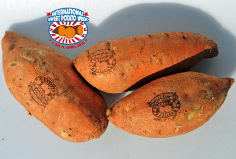 International Sweet Potato Week - Verkostungen. Foto © ASPMI & NCSP