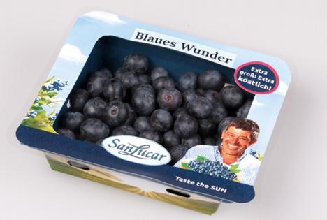 Natur-Schale: Innovative und Nachhaltige Verpackung für Beeren. Foto © SanLucar