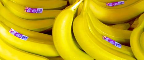 ONE Banana ist Bio. (Photo: Business Wire)