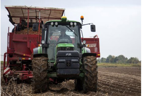 Pfälzer Grumbeere: Verbraucher schätzen nachhaltig erzeugte Grundnahrungsmittel
