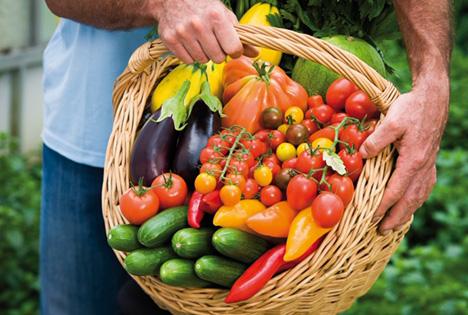 Foto © Reichenau-Gemüse-Vertriebs eG