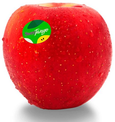 SweeTango®: Bereits im Sommer reif und mit absolutem Premium-Geschmack