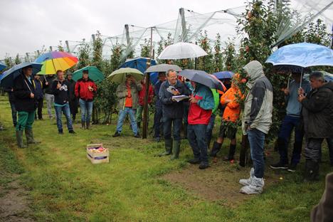 Foto Fachliche Diskussionen in bester Laune trotz Dauerregens am Montag