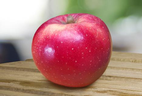 T&G Global vermarktet ersten gegen Klimaveränderung resistenten Apfel