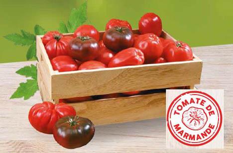 "Foto © ""Tomato de Marmande"""