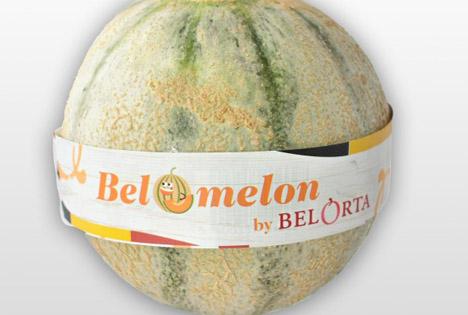 BelOrta dehnt ihr Angebot mit in Belgien erzeugten Melonen aus