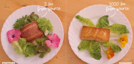 """Manches Gericht hat eine Weltreise hinter sich. Foto ©  """"obs/BE Food AG/StadtFarm"""""""
