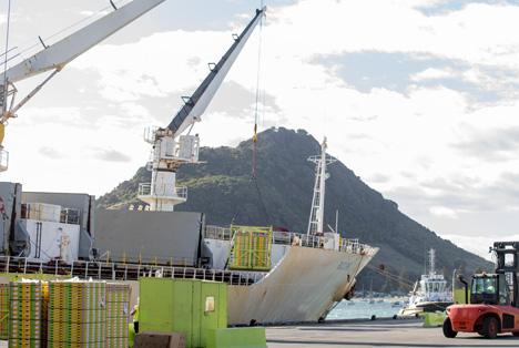 Zespri Kiwi 2020 shipping Foto © Zespri