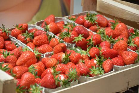 Hessische Erdbeeren. Foto © HMUKLV
