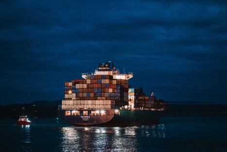 Volle Kraft voraus für das neuseeländische Envy™-Exportprogramm