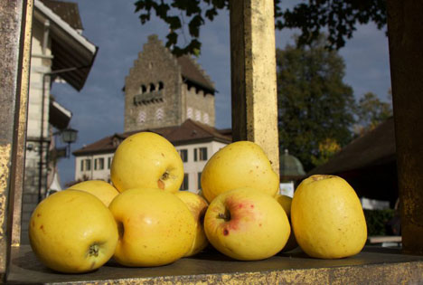Usteräpfel Fructus. Foto © Franziska Oertli /Fructus