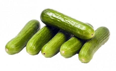 Crunchy Kings mini-cucumbers. Foto © BelOrta