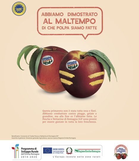 Poster © CSO Italy